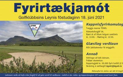 Fyrirtækjamót Leynis